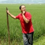 『「玄米食べたら無理なく痩せた」笑顔になれるお米セミナー』の画像