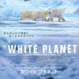 『ホワイト・プラネット』の画像