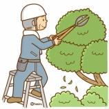 『【クリップアート】シルバー人材—植木の剪定・洋裁のイラスト』の画像