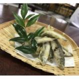 『ご好評の上長瀬やな特製「小鮎の天ぷら」』の画像