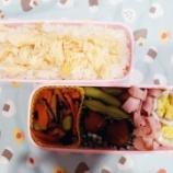 『アメリカdeお弁当⑲』の画像