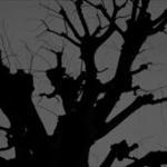 ネットの怖い話で一番ヤバいのは「大杉漣の死亡日は」だよな