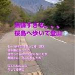 辻本 智子 オフィシャルブログ