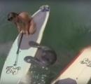 【動画】サーフィンしてたらマナティが挨拶にくる 可愛いくてワロタ