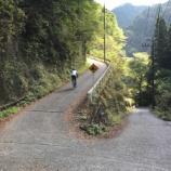 『打倒風張林道!あと梅ノ木峠。』の画像