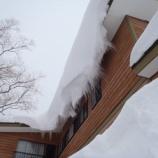 『大 雪』の画像