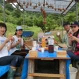 『2014.07.12 正副理事長の畑へスイカ狩り』の画像