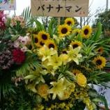 『【乃木坂46】バナナマン&アンジャッシュ児嶋『4th YEAR BIRTHDAY LIVE』を観覧している模様!!!』の画像