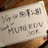 『オレの告知!【年忘れムネコフ30Kのご案内】』の画像