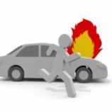 『カーボン鳥が炎上と動画消した理由はプリウス訴訟か』の画像