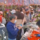 『【ニュースのつぶやき】「リサイクル促進!旧正月に飾る桃の花、お正月が終わったら…?」』の画像