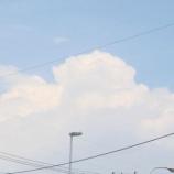 『梅雨明け地からの便り』の画像