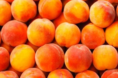 【朗報?】この5種のフルーツ食べるだけでハゲの進行を遅らせられると発表されるwwwのサムネイル画像