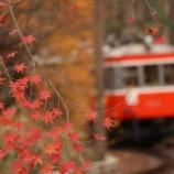 『秋の箱根を乗り回す2日間 2日目2 彫刻の森沿線カメラさんぽ』の画像