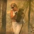 危険を顧みずコアラを救出した女性の行動に賞賛の声!(オーストラリア)