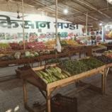 『【インド】野菜事情』の画像