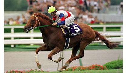 【ウマ娘】競走馬は大体気性粗いらしいけどグラスワンダーさんはやたらボケっとしてる話しか聞かない