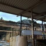 『屋根工事』の画像