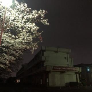 太田っ子ブログ