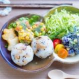 『ミックスベジタブル衣のシューマイと天かすの甘辛煮のおにぎりブランチ』の画像