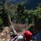 『それいけ駒仙の山旅☆一筋縄でいかない甲斐駒ヶ岳へのみち』の画像