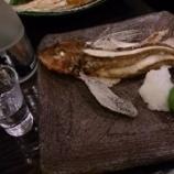 『不細工な見た目でも、美味な「ほうぼう(魴鯡)の炭焼き」~【とと家】@大阪・梅田』の画像