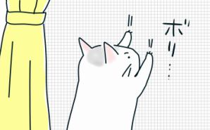 """飼い猫に""""通じた""""ジェスチャーとは"""
