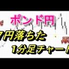 『ブレグジットでポンド円が27円落ちた1分足チャート再現してみた』の画像