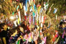 七夕:願い天に届け…短冊ササに 機物神社
