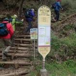 『2019/4/29ヤビツ峠から塔ノ岳、大倉』の画像