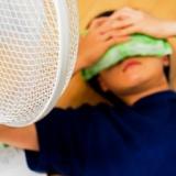 「扇風機をつけっぱで寝ると死ぬ」「たまごを1日2つ以上食うと死ぬ」これがガチだと知ったときの衝撃