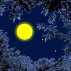 『満月のメッセージ�』の画像