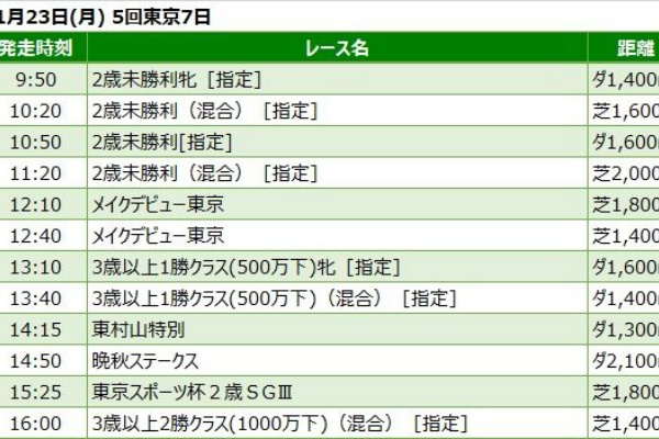 場 天気 競馬 東京