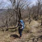 『日本百名山 大峰山(弥山/八経ヶ岳)へ☆その2』の画像