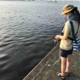 『初めて釣りをする女の子と一緒にタコを釣りに行った話。』の画像