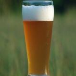 『セブン『生ビール販売』に専門家が断言 「これは絶対に売れる。メリットしかない」』の画像