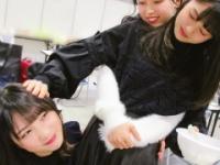 【乃木坂46】与田、岩本「こいつチョコあげたらすぐ懐いた」