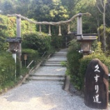『【奈良】狭井神社の御朱印』の画像