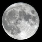 『天気予報大外れ!昨夜は中秋の名月でした ☆彡』の画像
