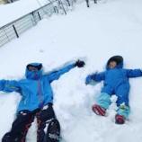 『雪遊びを通して』の画像