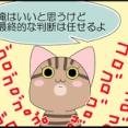 【保護猫】ちょっと考える時間をください【予期せぬ出来事】