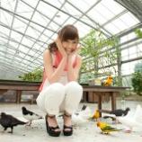 『【乃木坂46】西野七瀬『ハト好き』が高じて・・・』の画像