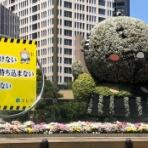 『【緊急事態宣言】外出自粛の2日目の日曜日、日中の浜松駅前や夜のモール街の風景【浜松フォト】』の画像